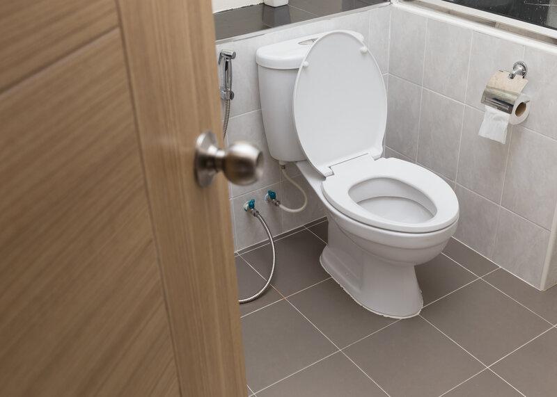 Toilet Inspection Metairie